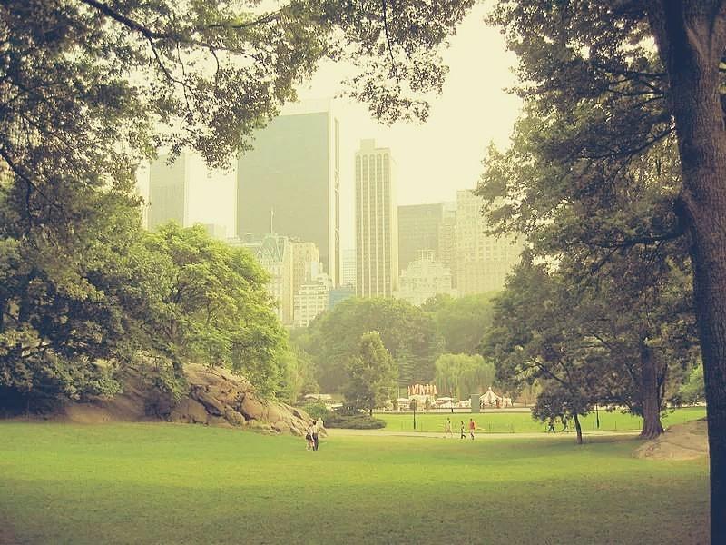 Овечий парк