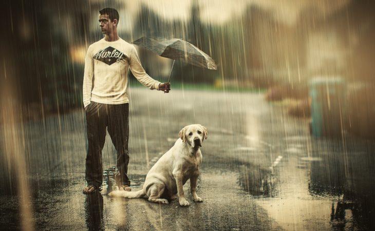 Мужские поступки и привычки