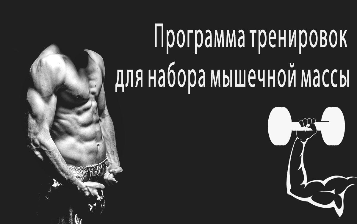 Программа тренировок для накачки мышц