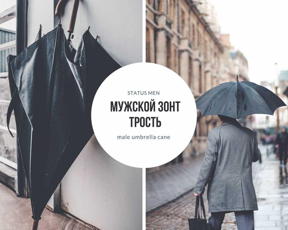 Мужской зонт трость