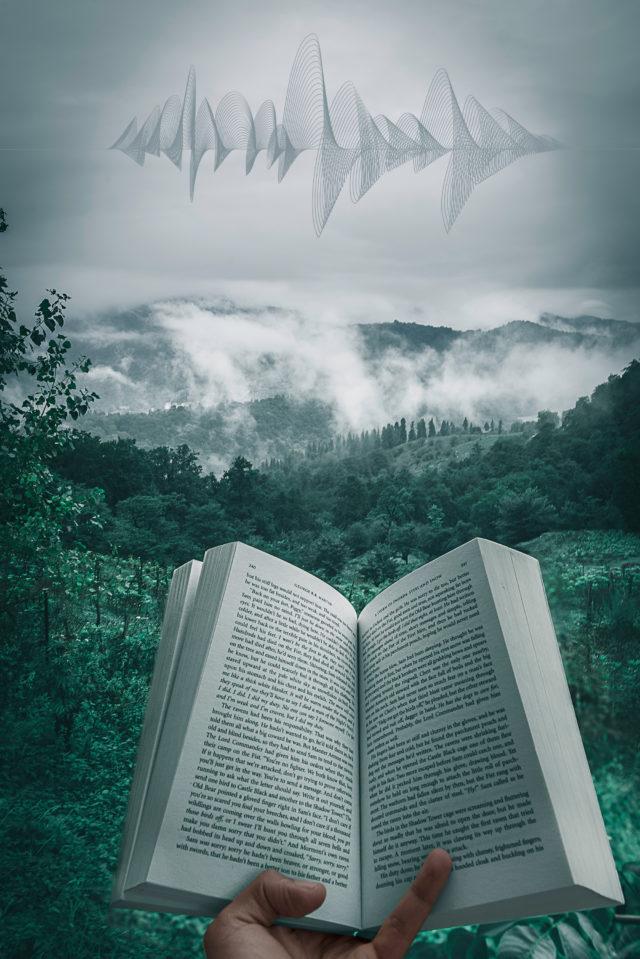 Читать книги или слушать аудио