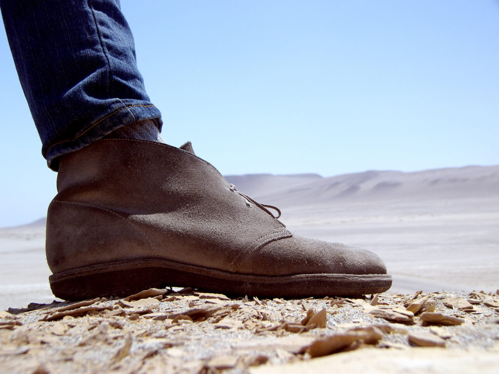 Clarks Desert